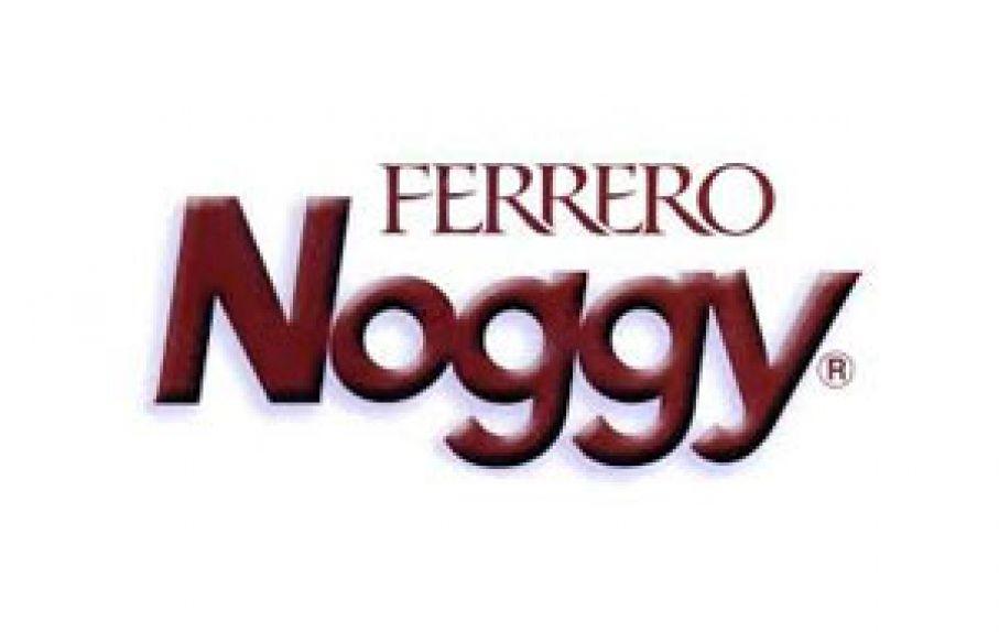Noggy